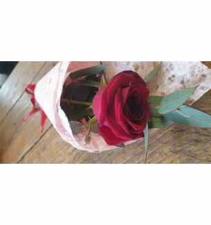 A single red rose & eucalyptus