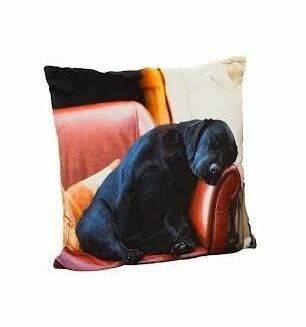 Sleeping Labrador Soft Touch Cushion Cover