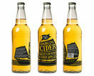 Lyme Bay Jack Ratt Sparkling Cider 50 cl additional 2
