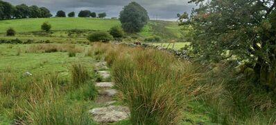 6 Amazing Walking Routes in Devon